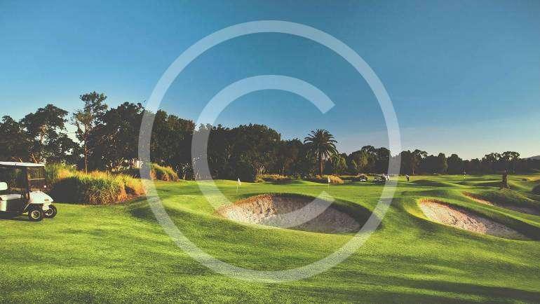 Make More Time for Golf